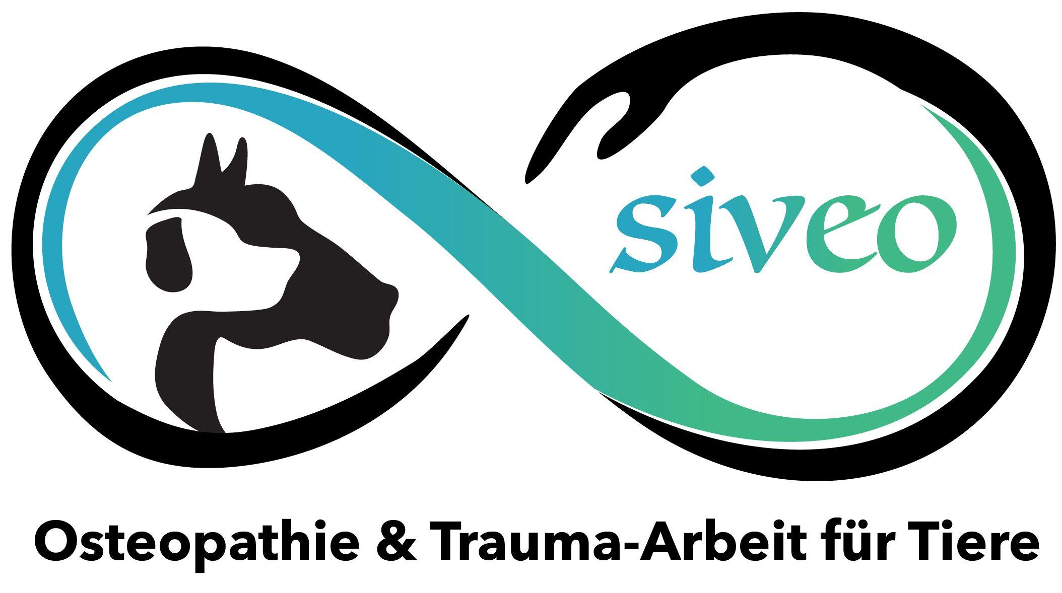 Osteopathie und Trauma Arbeit für Tiere